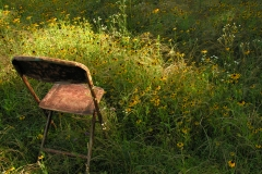 Chair-in-Wildflowers-26