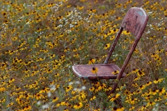 Chair-in-wildflower-Field